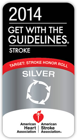 2014 Get with the guidelines  - stroke honor roll silver